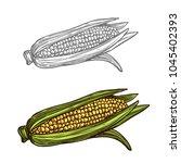 corn sketch icon. vector... | Shutterstock .eps vector #1045402393