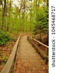 a nature trail boardwalk...   Shutterstock . vector #1045468717