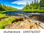 Small photo of Forest river summer landscape