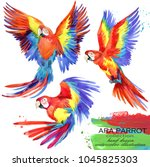 ara parrot hand drawn... | Shutterstock . vector #1045825303