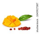 fresh garnet  nutritious and... | Shutterstock .eps vector #1045927387