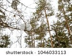 winter landscape with pine... | Shutterstock . vector #1046033113