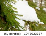 winter landscape with pine... | Shutterstock . vector #1046033137