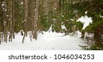 winter landscape with pine... | Shutterstock . vector #1046034253