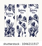 crocus card hand drawn isolated ... | Shutterstock .eps vector #1046211517