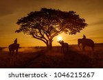 mahout lifestyle in elephant... | Shutterstock . vector #1046215267