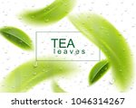 tea leaves background. green... | Shutterstock .eps vector #1046314267