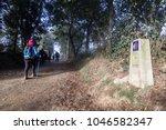 a pilgrim is walking  between... | Shutterstock . vector #1046582347