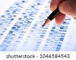 scientist analyzes dna gel used ... | Shutterstock . vector #1046584543