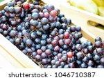 fresh purple grapes from a farm ... | Shutterstock . vector #1046710387