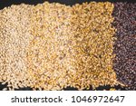 different malted barley beer... | Shutterstock . vector #1046972647