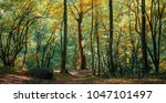 coniferous forest in the... | Shutterstock . vector #1047101497