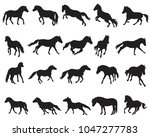 vector isolated horses ... | Shutterstock .eps vector #1047277783