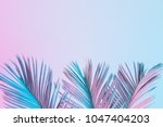 tropical and palm leaves in... | Shutterstock . vector #1047404203