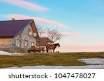 a simple rural house on a hill... | Shutterstock . vector #1047478027