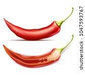 vector realistic illustration... | Shutterstock .eps vector #1047593767
