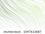 light green vector pattern with ... | Shutterstock .eps vector #1047613687