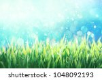 dew covered green grass against ... | Shutterstock . vector #1048092193