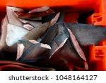 a set of shark fins cut and... | Shutterstock . vector #1048164127