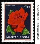 hungary   circa 1982  a stamp...   Shutterstock . vector #104829977