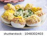 homemade stuffed eggs  perfect... | Shutterstock . vector #1048302403