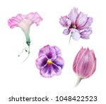 watercolor set of light pink... | Shutterstock . vector #1048422523