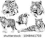 vector drawings sketches... | Shutterstock .eps vector #1048461703