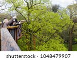 Small photo of London, UK - April 18, 2014. Tourists take selfies from the Treetop Walkway at Kew Botanic Gardens. The walkway allows visitors to walk through 200 metres of forest canopy
