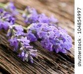 fresh lavender on wooden ground | Shutterstock . vector #104854997