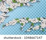 set of spring blooming fruit...   Shutterstock .eps vector #1048667147