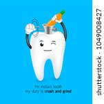 cute cartoon molar tooth crush... | Shutterstock .eps vector #1049008427