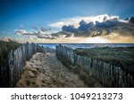 fenced path to the beach of la...   Shutterstock . vector #1049213273