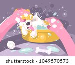 bathing dog in basin with water.... | Shutterstock .eps vector #1049570573