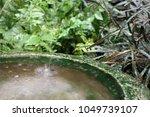 running water trickling into a... | Shutterstock . vector #1049739107