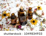 dried flowers essential oil...   Shutterstock . vector #1049834933