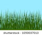 seamless horizontal background  ...   Shutterstock . vector #1050037013
