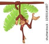cute monkey chimpanzee hanging  ... | Shutterstock . vector #1050141887