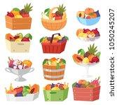 fruit basket vector fruity...   Shutterstock .eps vector #1050245207