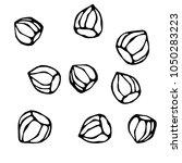 whole unpeeled hazelnuts in... | Shutterstock .eps vector #1050283223