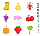 origin icons set. cartoon set... | Shutterstock .eps vector #1050325607