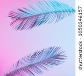 tropical and palm leaves in... | Shutterstock . vector #1050346157
