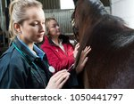 Female Vet Giving Injection To...