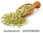 dried fennel seeds in the olive ... | Shutterstock . vector #1050508583