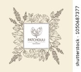 background with patchouli ... | Shutterstock .eps vector #1050687377