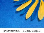 blue and yellow feathers....   Shutterstock . vector #1050778013