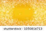 beer bubbles background with... | Shutterstock .eps vector #1050816713