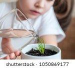 little toddler girl is holding... | Shutterstock . vector #1050869177
