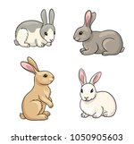 rabbits in cartoon style.... | Shutterstock .eps vector #1050905603