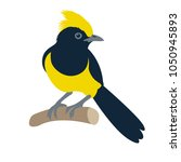 sultan tit bird vector... | Shutterstock .eps vector #1050945893