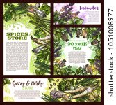 herbs and spices store sketch... | Shutterstock .eps vector #1051008977
